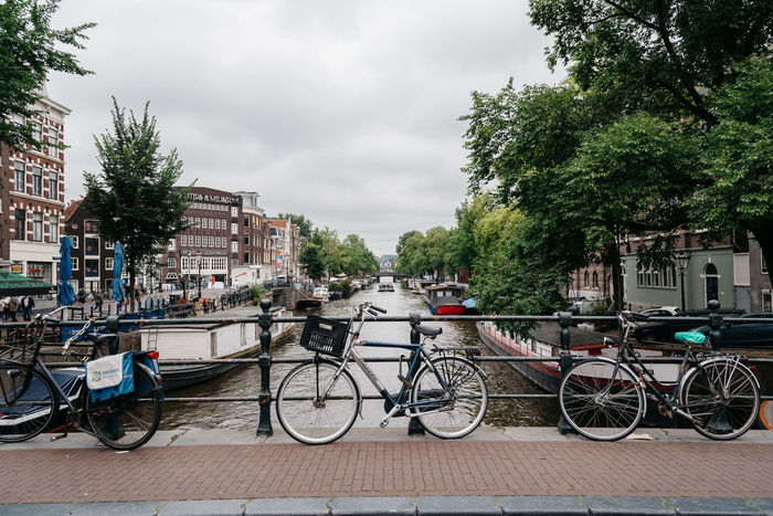Amsterdam street scene Amsterdam Bicycle Bridge Canal Canals Canals And Waterways Cannabis City City City Life Cityscape Cityscape Day European  No People Outdoors Red Light District Sky Street Tourism Travel Tree