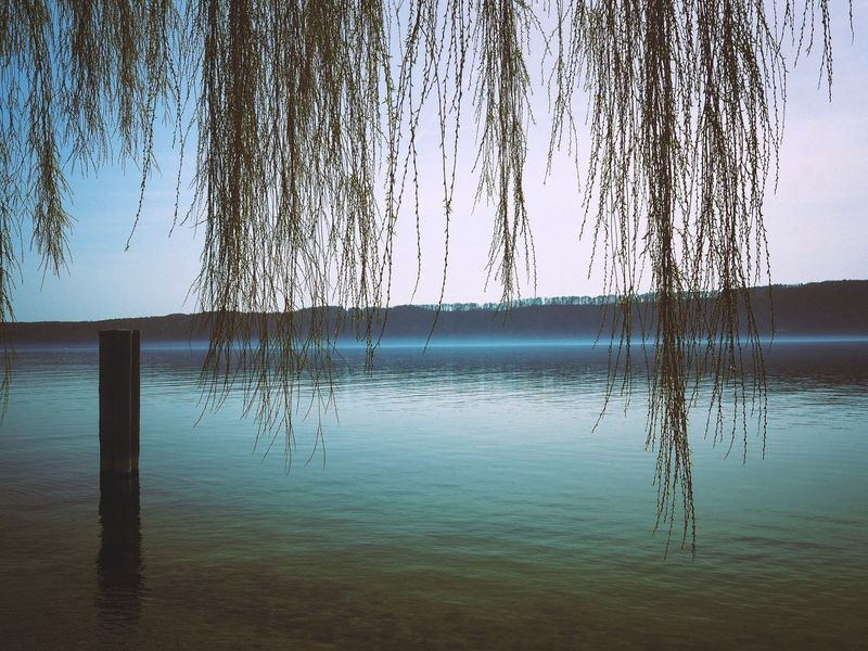 Lake life Landscape Lakeofconstance Lake Naturelovers Nature Water Sky Nature Reflection Day No People Sea Tranquility Beauty In Nature Outdoors Tranquil Scene