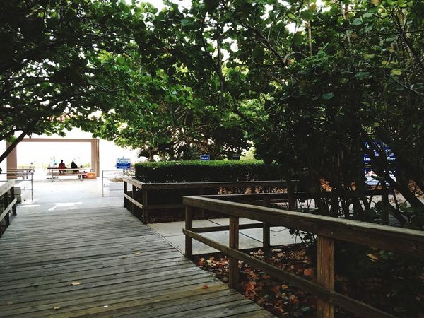 Beachphotography Boardwalk Access Sunday May 8 Mother's Day 2016