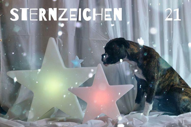 Türchen 21 Juno's Adventskalender Juno's World For My Friends That Connect Christmastime Night Lights Enjoying Life