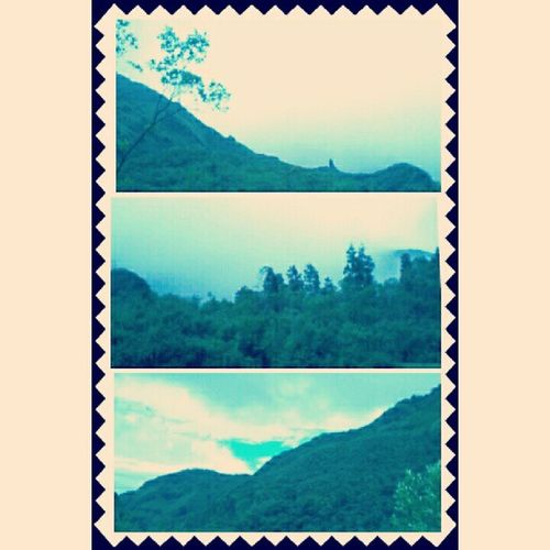 Lembah Ramma', puncak Talung, dan kabut yang menyelimuti. Mereka adalah kesatuan alasan mengapa alam begitu indah. Lembah Ramma Talung Cloud Gowa SulawesiSelatan Nature Instagram Nusantara Indonesia Pegunungan Kakigunung
