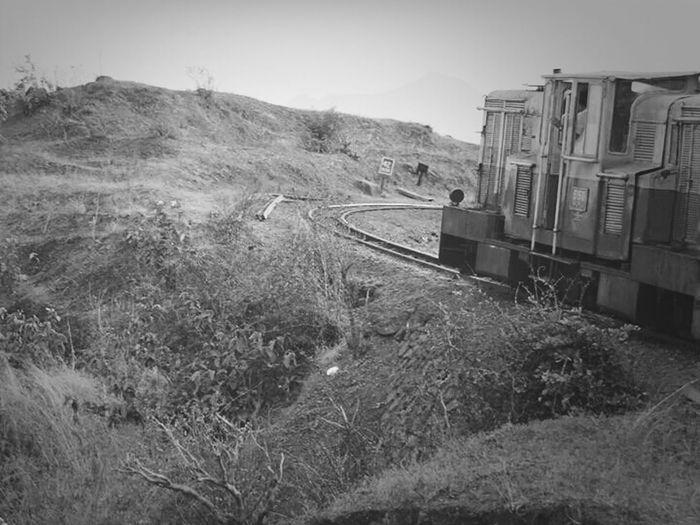 Train Mountainview Toy Train