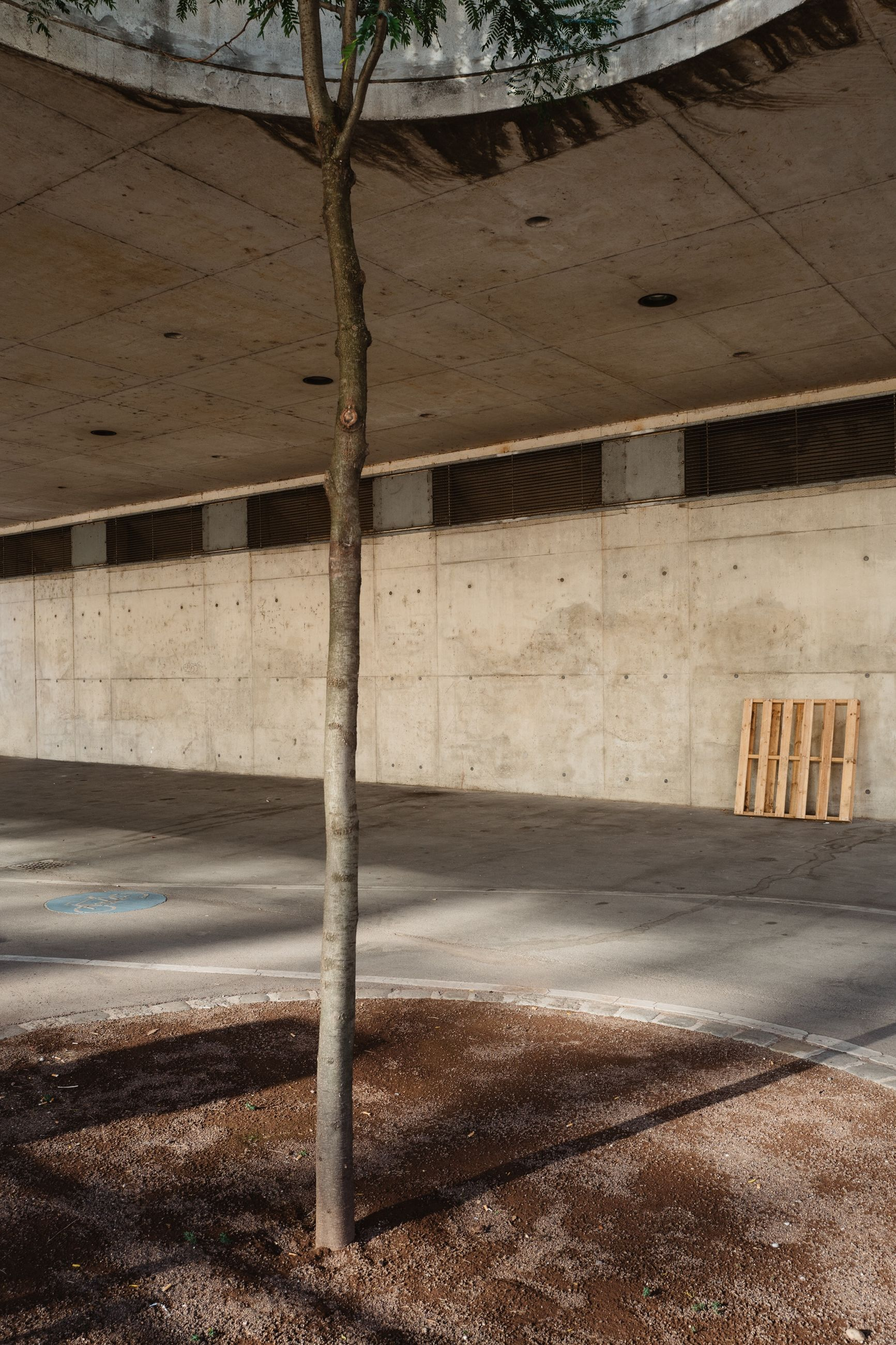 architecture, built structure, no people, architectural column, sunlight, day, nature, abandoned, shadow, empty, outdoors, building, absence, parking lot, flooring, city, transportation, road, ceiling, parking garage