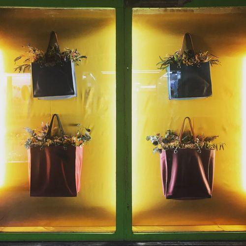 Handbags Bags Window Display Plant Display Handbag  Fashion&style Plant Life Hanging Window