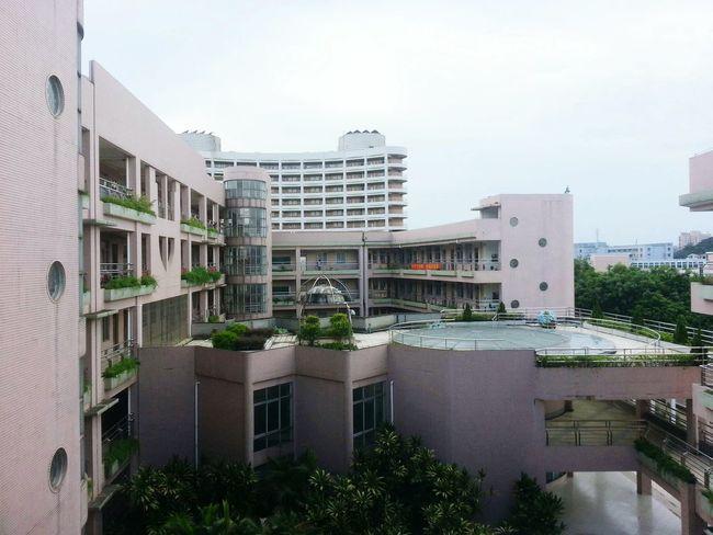 School School ✌