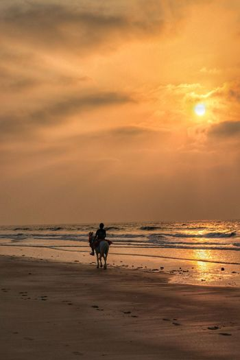 Man riding horse on beach against sky during sunset