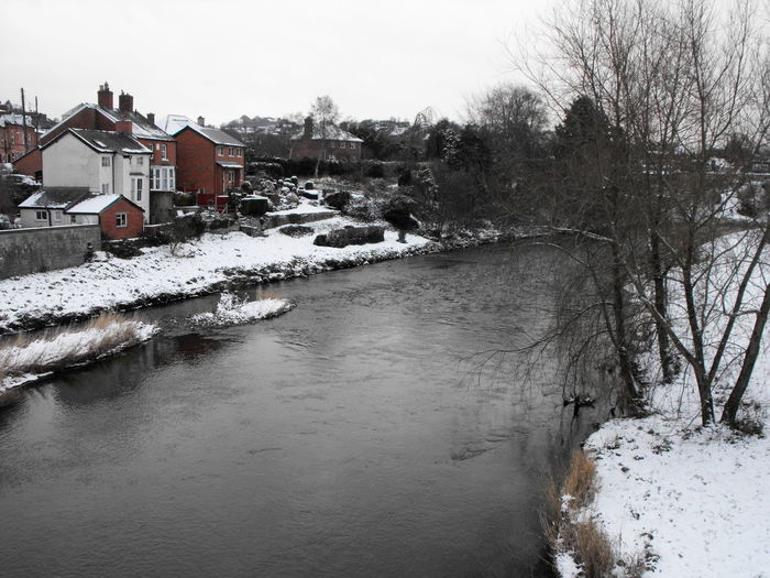 Frozen river amidst buildings and trees against sky