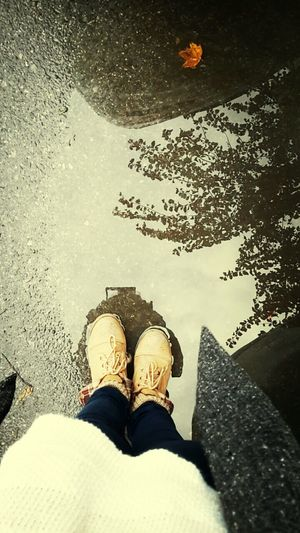 Autumn ♡♡