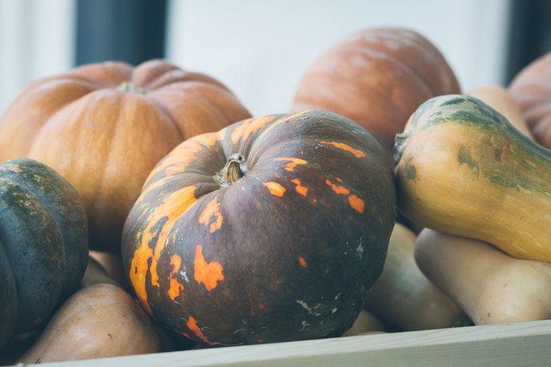 Close-up of squashes and pumpkins for sale at market