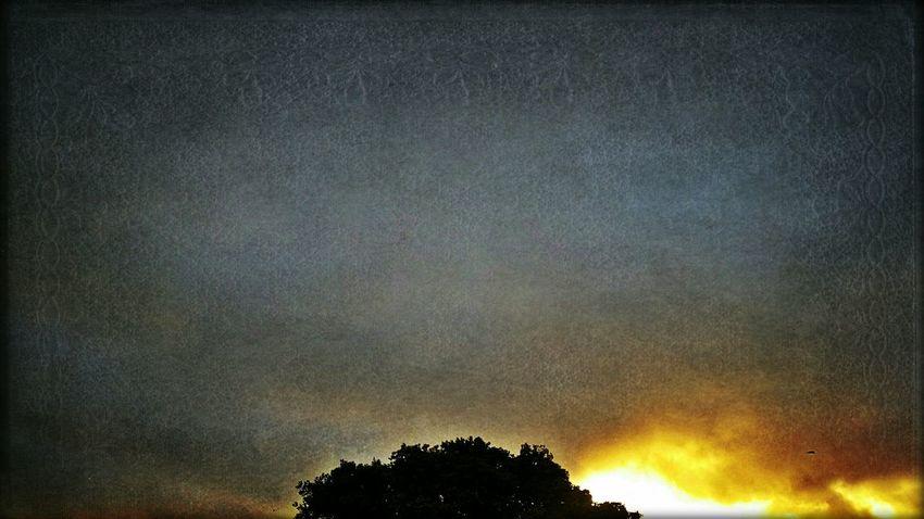 Good evening! Hope Tuesday was a good one! 👍🙌👍 Good Evening Konbanwa Sunset Grey Sky Sunlight
