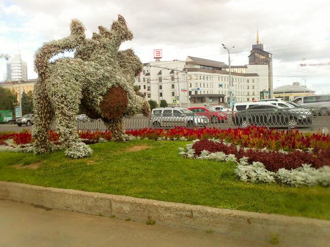 First Eyeem Photo Kazan Summer Tatarstan Buetiful Places