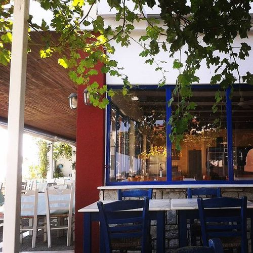 Leptokarya Leptokaria Medusa Grapes seafood seafood_restaurant greece colours Το καλυτερο σημείο να κάθεσαι μ αυτή τη ζέστη ;-)