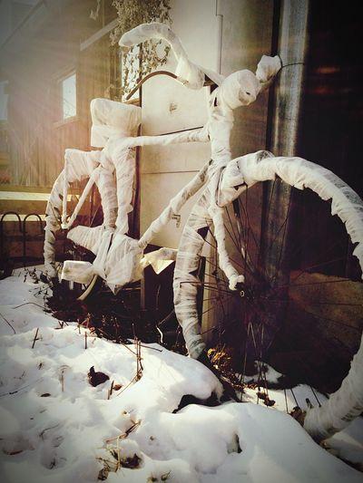 Fahrrad Cold Temperature No People Winter Sunlight Sunshine ☀ Bicycle Old #eingewickelt