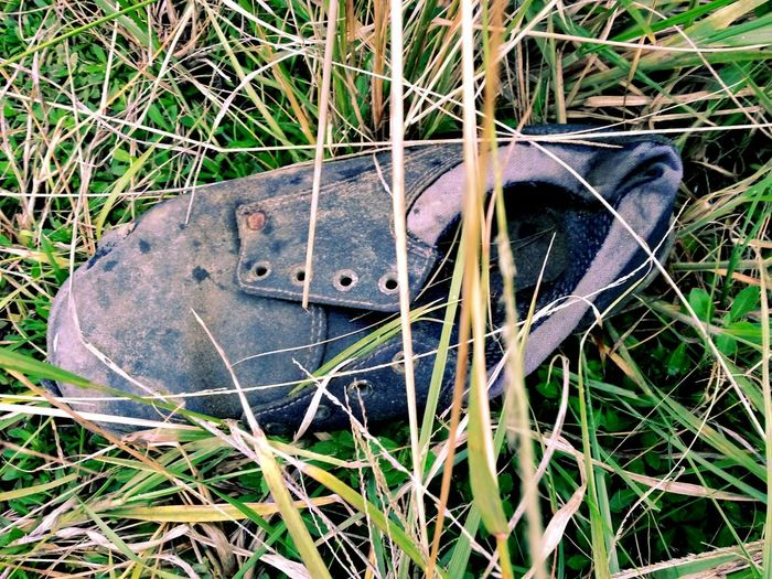 Takingpictures Old Shoe In The Bush Close-up No People 😇😇😇