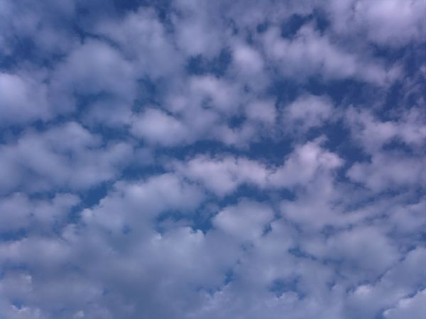 Rolling The Cloud Cloud - Sky Backgrounds Low Angle View Sky Full Frame Nature Beauty In Nature Day Sky Only Tranquility Outdoors Scenics No People