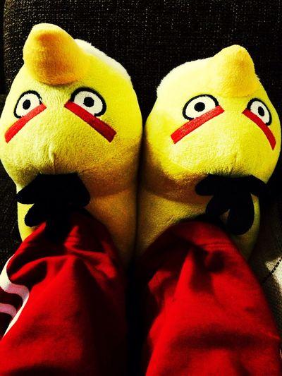 Benim sarışın sevgililerim :)