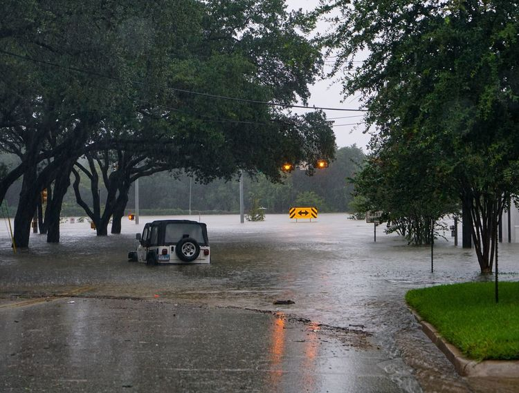 In the midst of Harvey Tree Car Transportation Land Vehicle Wet Outdoors Road No People Water Day Nature Tropical Storm Hurricane Houston Flood Buffalo Bayou Rain Disaster