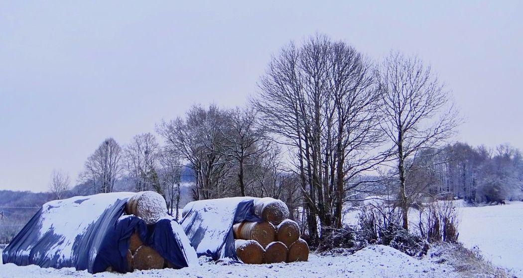 Snow ❄ Winter Landscape Country Road Limousin Strange Walker