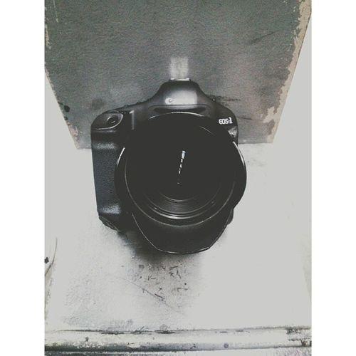 Im in love. #canon #lglass #cameraporn #porn #photography #photographer #epphotography #otcpress #otc #otcotcotc #newcamera #sexy #sex #1Dmark4 #markiv #1dmarkiv #canonusers #yum #hashtag #ig #203028 #swag #soexpensive #dreamcamera