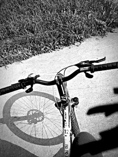 Hanging Out Relaxing Randomphoto Streetphoto Cycling Blackandwhite Traveling Holiday Seoul, Korea Hangang River 2014