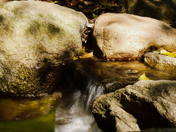 Beauty In Nature Close-up Day Nature No People Outdoors Rock - Object Water Waterfall