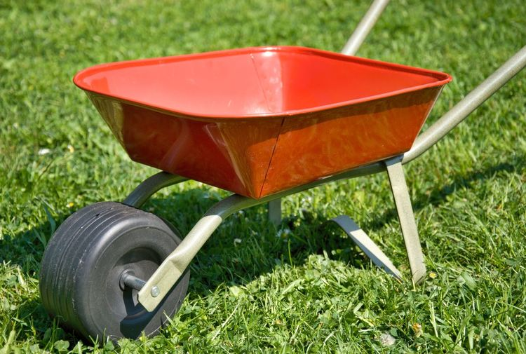 Red handbarrow Green Black Day Front Or Back Yard Grass Green Color Handbarrow Lawn No People Outdoors Red Small Toy Wheelbarrow