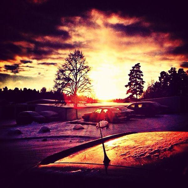 Winter Enjoying Life Taking Photos