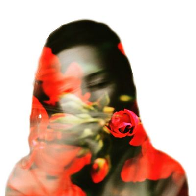 Roses Double Exposure Roses Rose🌹 Model Girl Love Colors Contrast Cool Nice Pretty White Photography Psd  Plants Woman Popular Portrait Portrait Of A Woman