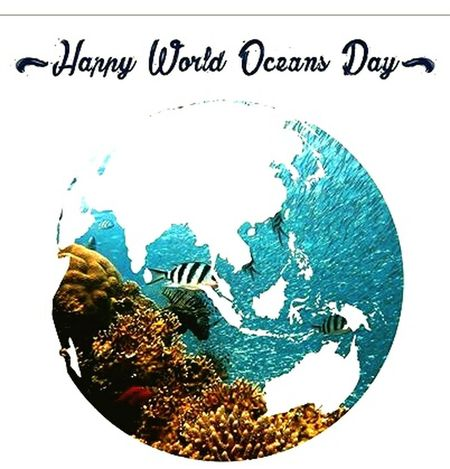 Jalesveva Jayamahe Global Communications Visitindonesia Ocean Oceanlife Oceandays Text Business Internet Close-up No People Day