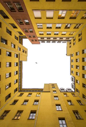 Real Bird EyeEm Best Shots The Architect - 2018 EyeEm Awards EyeEm Gallery EyeEm Selects Eye4photography  EyeEmBestPics The Week on EyeEm Architecture Built Structure Building Exterior Building Window Sky Residential District