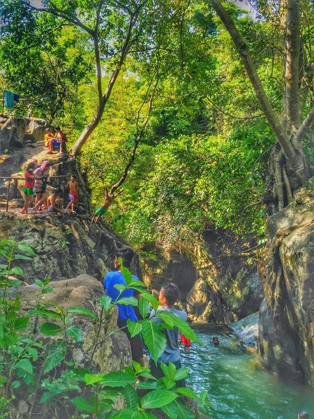 The Secret Spaces Bacolod Native Hdrphotography Real People Kanlaon Summer HDR Childhood Tree Green Color Leisure Activity Nature The Secret Spaces EyeEmNewHere TCPM Break The Mold Art Is Everywhere The Great Outdoors - 2017 EyeEm Awards The Photojournalist - 2017 EyeEm Awards
