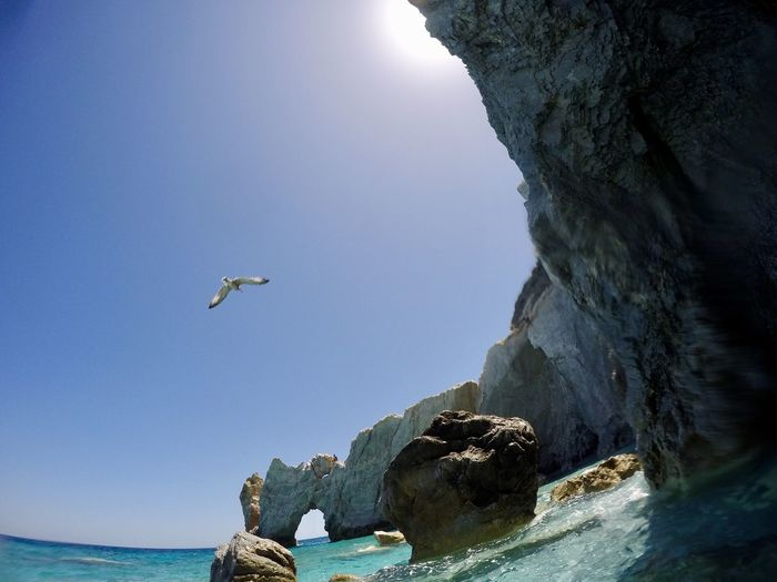 Low angle view of seagull flying over sea against clear sky