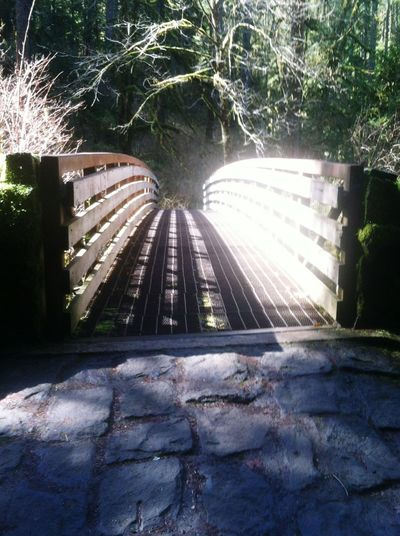 This I took while on a really long hike. I liked the mystery it gives Bridgeofmystery Peaceful Awesome Nature Theroadlesstraveled Theresbeautyineberything Life's Mysterys