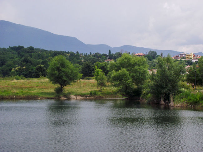 Mountains And Valleys Waterfront Lake View Reflections In The Water Artificial Lake Of Tirana Pinaceae Pine Woodland Needle - Plant Part Eastern Europe Rocky Mountains Snowcapped Mountain Mountain Range