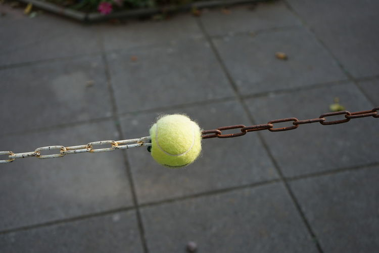 Close-up of yellow ball on stem