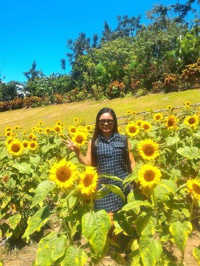 EyeEm Diversity Art Is Everywhere EyeEmNewHere Kawa Kawa Hill, Ligao City Sunflower Farm Sunflower The Great Outdoors - 2017 EyeEm Awards