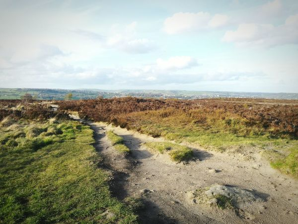 The Great Outdoors With Adobe My Favorite Photo Landscape Nature Photography Natural Beauty Nature Tree View On Top Of The World Moor  Moors Norland Moor Yorkshire West Yorkshire Calderdale Fields Fieldscape Heather Texture Windy Textured  POV Gorgeous Landscapes Landscape_photography