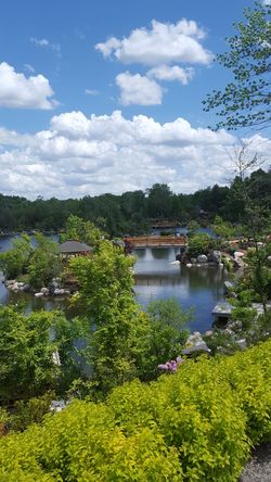 Park Nature Meijergardens Michigan Grandrapids Beautiful Blue Sky 하늘 날씨 좋아요 Tree Water Tranquil Scene Scenics Sky Tranquility Tourism High Angle View Growth Beauty In Nature Non-urban Scene Travel Destinations Idyllic Plant