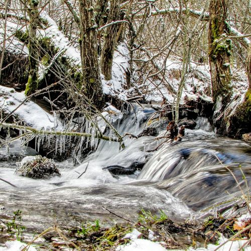 Winter Winter River Frosty Hiber Invierno Frio ⛄❄ Cold Winter ❄⛄ Winteriscoming