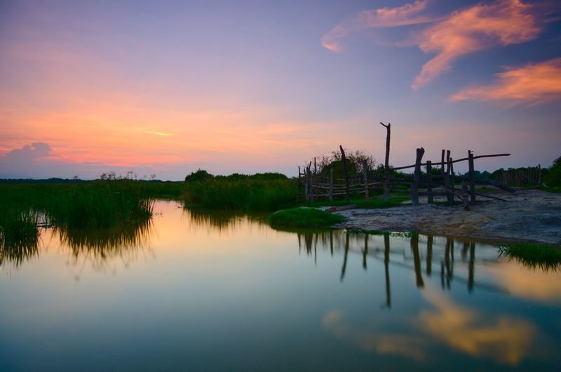 Beauty of nature Amazing View Amazing Malaysia EyeEm Nature Lover Wallpaper EyeEm Color Landscape Sunrise Kelantan Backgrounds Sunset Water Sunset Tree Lake Reflection Fishing Business Finance And Industry Sky Landscape Reflection Lake Rice Paddy