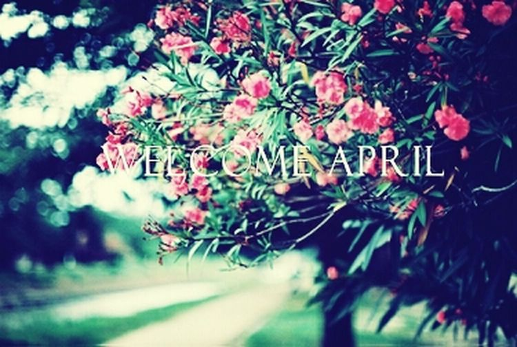 welcome april :D