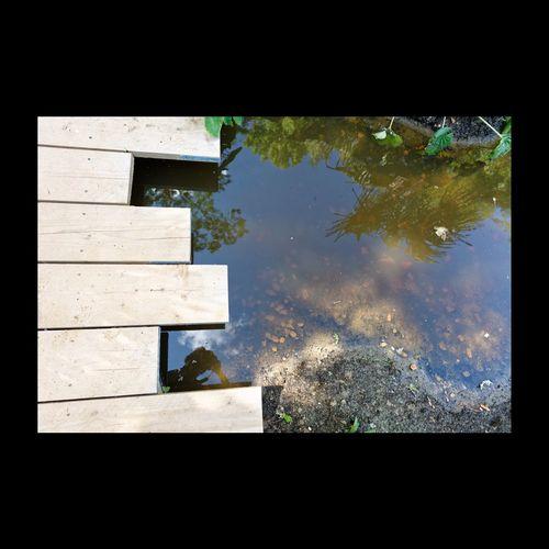 Festival Des Jardins De Chaumont Chaumont-sur-Loire Jardin Reflection Water Reflections Selfportrait Autoportrait Abstract Eyem Best Shots EyeEm Best Shots - Reflections