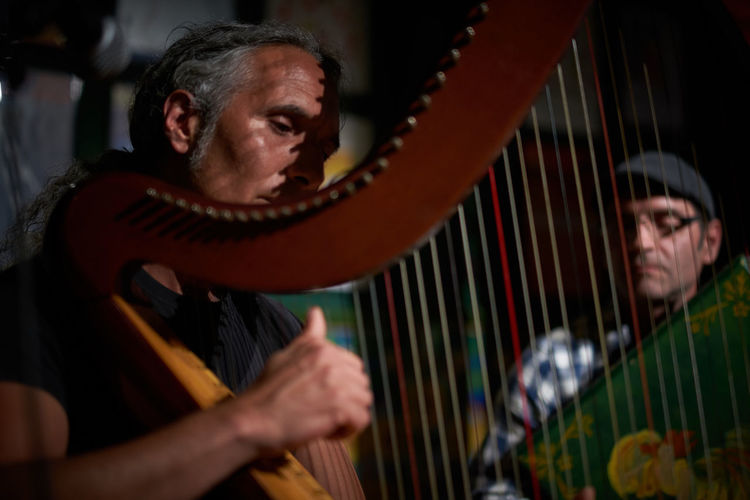 Arpa Concert Sonyimages Traditional Music Traditional Musical Instrument