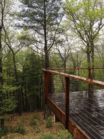 Deck Rain The Great Outdoors With Adobe Forest
