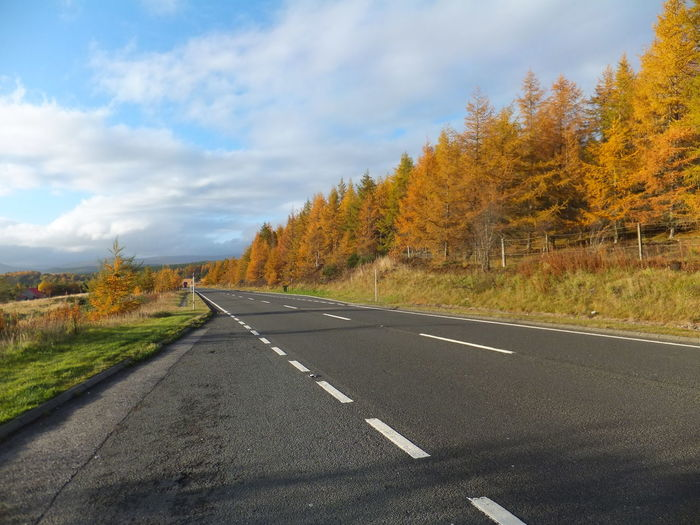 Country road with trees against sky during autumn