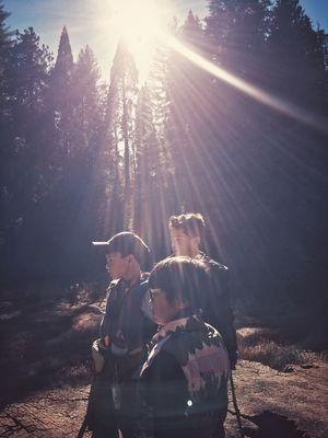 Sunlight Outdoors Kids Trees California Dreamin The Great Outdoors - 2018 EyeEm Awards The Traveler - 2018 EyeEm Awards