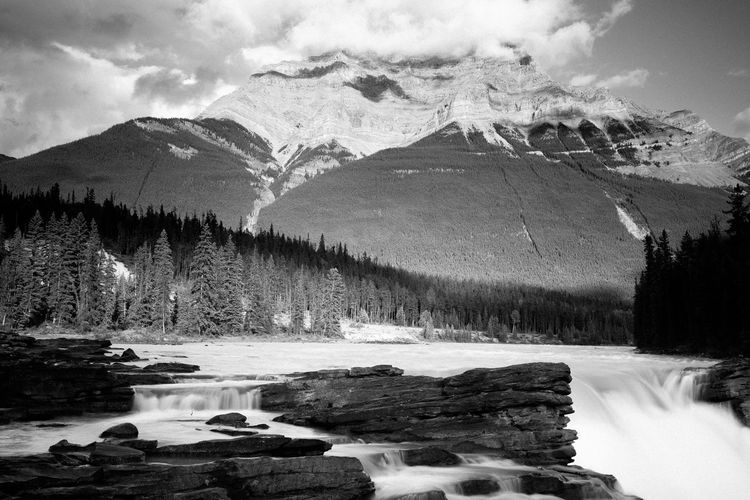 Black & White Beauty In Nature Black And White Blackandwhite Cold Temperature Day Mountain Mountain Range Nature No People Outdoors River Scenics Sky Snow Tranquility Tree Water Winter Athabascafalls Athabasca Falls Athabasca Glacier AthabascaGlacier Athabasca River Athabasca