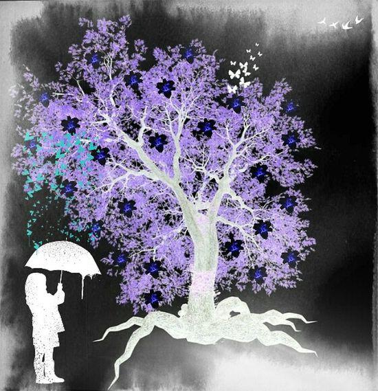 Creative Picture Negative Effect Tree