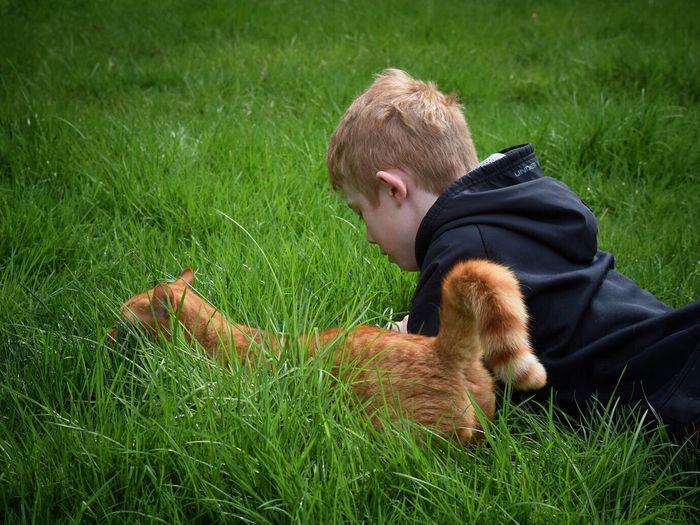 Boy With Cat Lying On Grassy Field