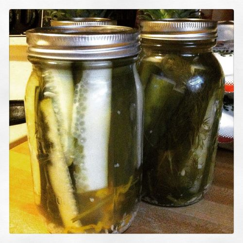 Pickles Homemade